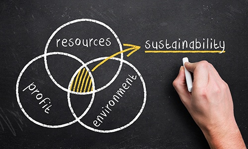 Full Circle Sustainability: Reducing Waste in Restaurants