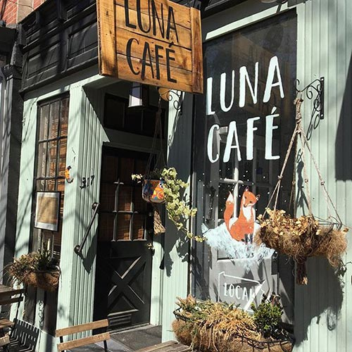 Client Spotlight: Luna Café
